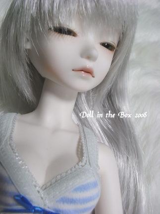 Daphne005