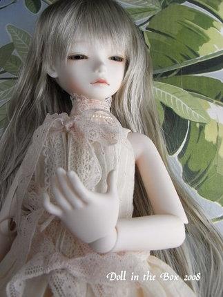 Daphne008