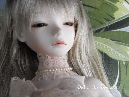 Daphne010