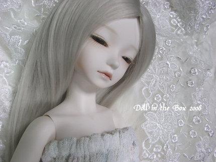 Daphne011