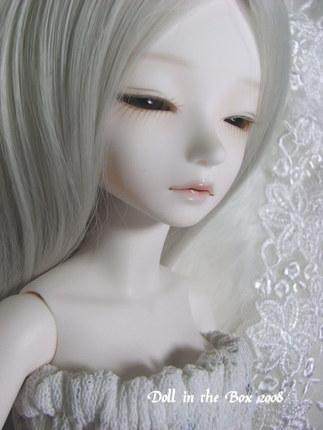 Daphne014
