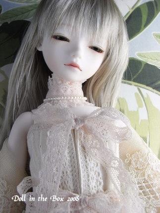 Daphne017