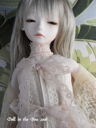 Daphne018
