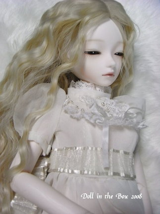 Daphne028